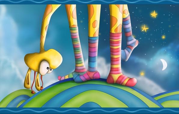 Picture stars, feet, color, giraffe, socks