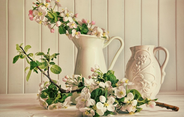 Picture flowers, branch, pink, pitcher, white, flowering