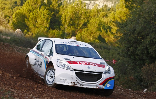 Picture Peugeot, rally, Peugeot 208 Type R5