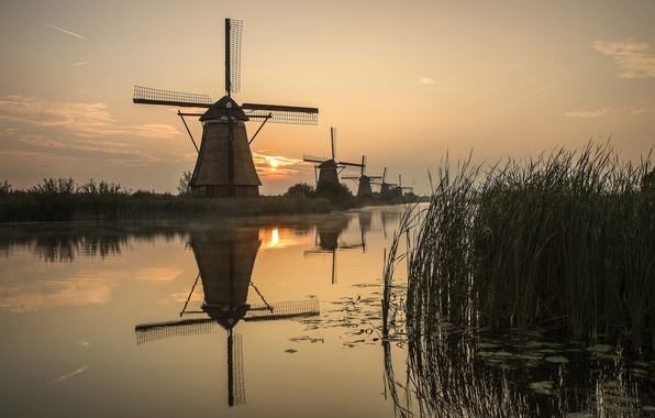 Picture the sun, river, sunrise, reed, mill, Holland