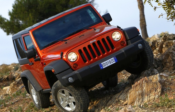 Picture trees, red, stones, jeep, SUV, off road, the front, jeep, bias, wrangler, Rubicon, Ringler, rubicon