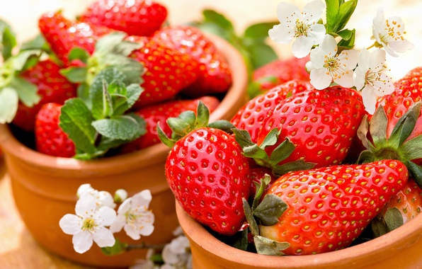 Picture berries, strawberry, red, fresh, ripe, strawberry, berries