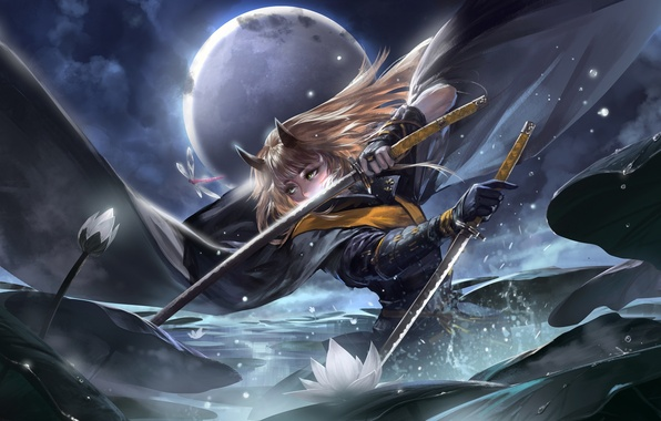 Picture water, girl, clouds, night, weapons, the moon, katana, anime, dragonfly, art, water lilies, alcd