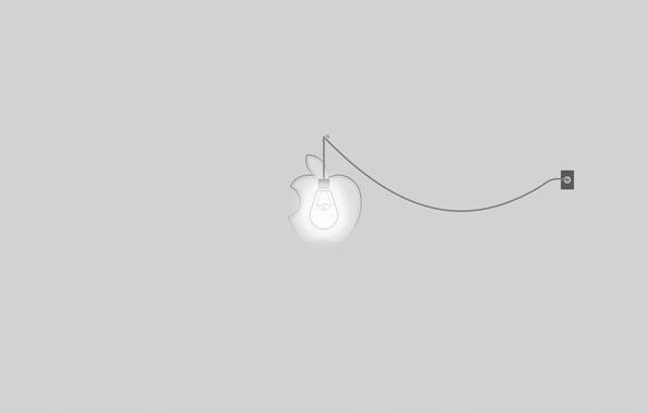 Picture light bulb, light, apple, minimalism, outlet, light, rose, nail, minimalism, line, cord, brand, brand, 2560x1600, …
