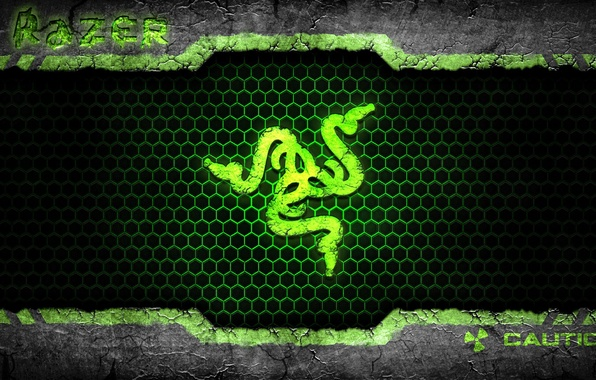 Picture snakes, the inscription, icon, brand, razer