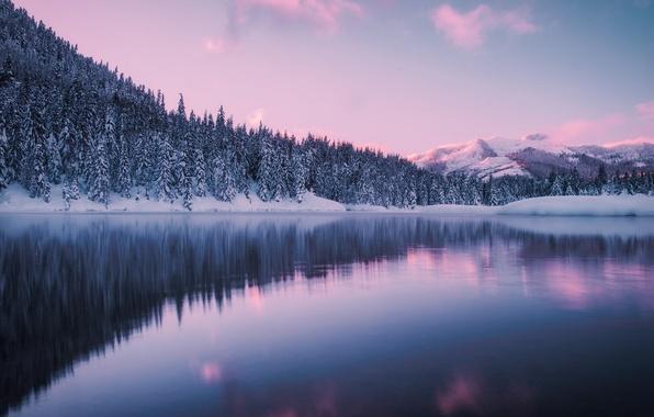 Picture winter, forest, mountains, lake, pond, Washington, Washington, Gold Creek Pond, The Giac, Hyak