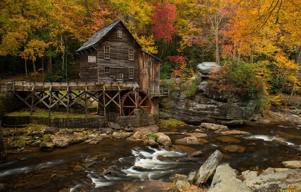 Picture autumn, forest, water, trees, house, river, hut
