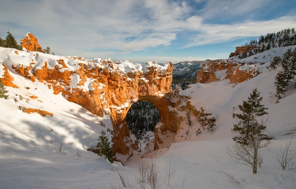 Picture winter, the sky, snow, trees, mountains, rocks, canyon, arch