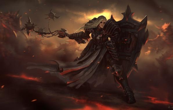 Picture girl, weapons, monster, art, shield, Diablo III, Reaper of Souls, Crusader