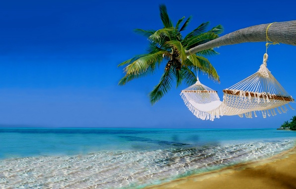 Picture sand, sea, beach, the sky, water, landscape, nature, palm trees, the ocean, stay, hammock, beach, …