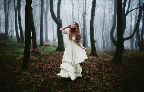 Picture forest, girl, fog, morning, dress