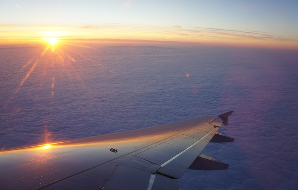 Picture the sky, sunset, The sun, wing, flight, the plane