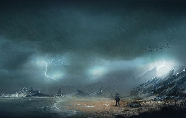 Picture sea, the storm, birds, stones, rain, rocks, coast, lightning, people, art