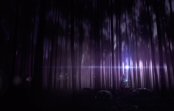Picture forest, trees, night, people, thicket, art, hood, wolves, cloak