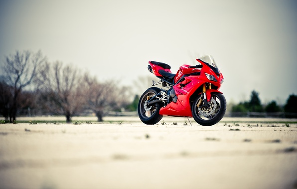 Picture the sky, trees, red, motorcycle, red, bike, Triumph, triumph, Dayton, Daytona 675
