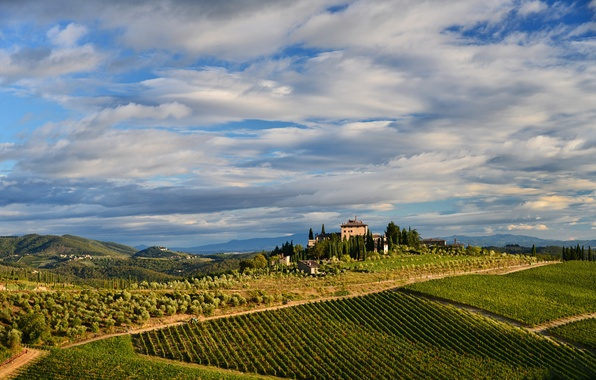 Picture the sky, clouds, trees, mountains, house, hills, field, Italy, vineyard