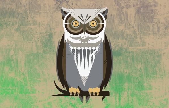 Picture owl, bird, Wallpaper, vector, vector, branch, art, Owl