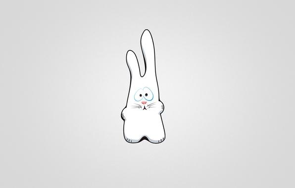 Picture hare, minimalism, rabbit, light background, rabbit