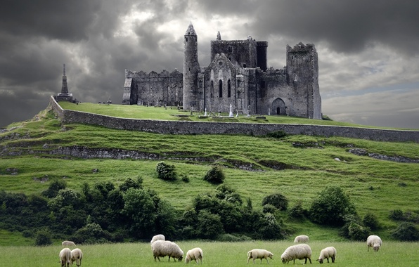 Picture clouds, castle, sheep, hill, Ireland, Ireland