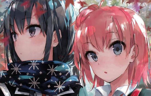 Picture anime, art, girl, two, OreGairu