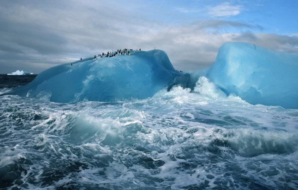 Picture blue, water, Ice, cold, arctic