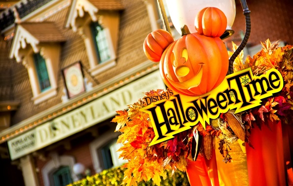 Picture leaves, decoration, house, corn, pumpkin, house, Halloween, leaves, Mickey Mouse, Mickey Mouse, pumpkin, decoration, corn, …