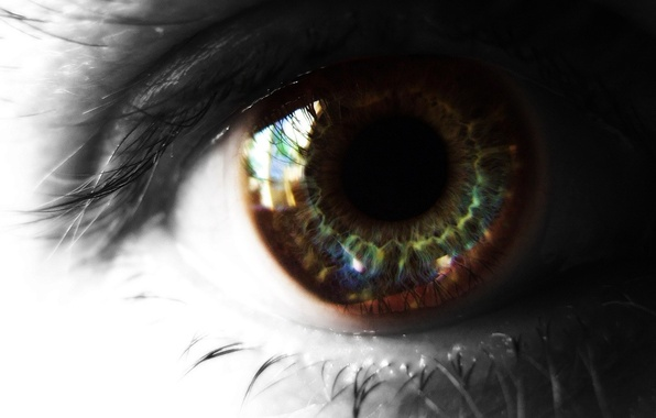 Picture eyelashes, Eyes, the pupil