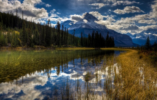 Picture forest, snow, lake, reflection, mountain