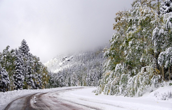 Picture winter, road, the sky, snow, trees, turn