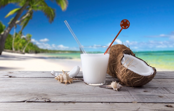 Picture sea, beach, palm trees, coconut, cocktail, shell