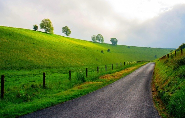 Picture road, forest, the sky, grass, trees, mountains, nature, spring, meadow, grass, forest, road, sky, trees, …