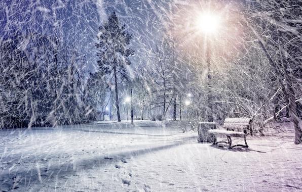 Picture winter, snow, lights, Park, lantern, Park, winter, snow