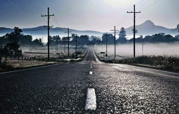 Picture road, fog, markup, posts, wire