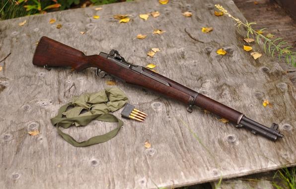 Picture rifle, clip, self-loading, M1 Garand