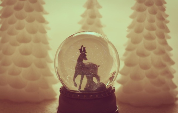 Picture toy, tree, ball, spruce, Christmas, New year, tree, herringbone, Christmas, goat, bokeh, New Year, goat, …