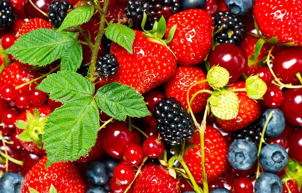 Picture leaves, berries, strawberry, currants, cherry, BlackBerry
