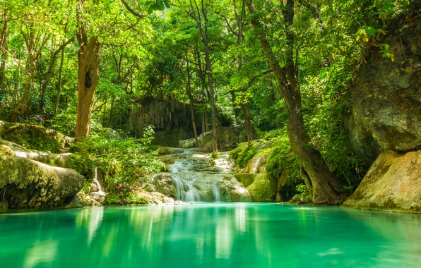 Picture greens, forest, summer, trees, lake, tropics, stream, stones, waterfall, jungle