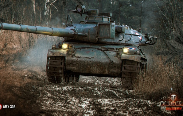 Picture forest, top, the Frenchman, World of Tanks, AMX 30B