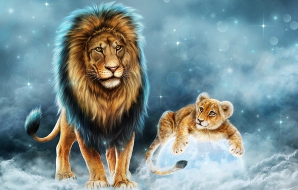 Picture animals, predator, Leo, king, father, lion, son