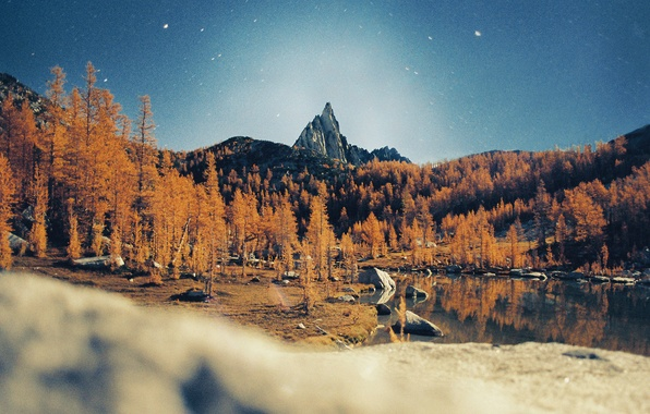 Picture stars, trees, mountains, night, lake, reflection, mirror, peak