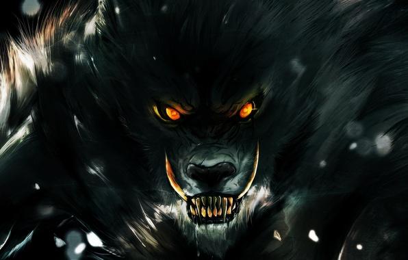 Picture eyes, look, darkness, wolf, teeth, rage, grin, werewolf