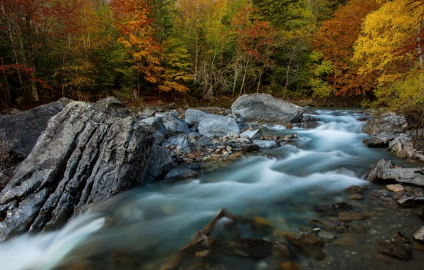 Picture autumn, forest, river, rocks, excerpt, Spain, threads, The Ordesa national Park and Monte Perdido, province …