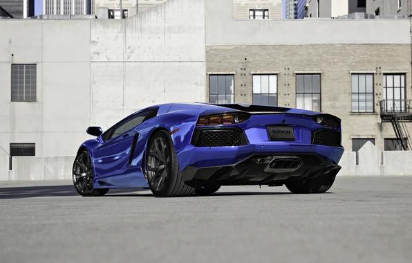 Picture blue, lamborghini, blue, back, aventador, lp700-4, Lamborghini, aventador