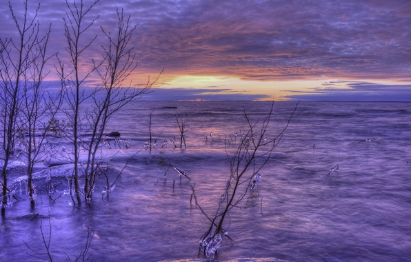 Picture ice, winter, the sky, clouds, trees, sunset, orange, lake, shore, the evening, Sweden, lilac