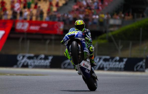 Picture Moto, motorcycle, Valentino Rossi, Valentino Rossi, The Doctpr, Moto Grand Prix, Moto Gp, Yamaha Factory, …