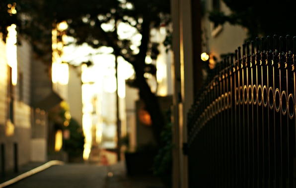 Picture road, macro, trees, street, the fence, the evening, fence, gate, blur, rods, bokeh, iron