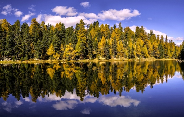 Picture autumn, forest, trees, lake, reflection, Switzerland, Switzerland, the Canton of Grisons, Graubünden, The Upper Engadine, …
