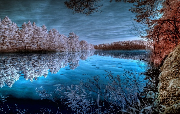 Picture FOREST, The SKY, CLOUDS, REFLECTION, POND, SURFACE, SHORE, TREES, MIRROR, POND, LAKE, SURFACE