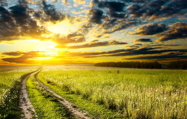 Picture road, the sky, grass, the sun, clouds, sunset, nature, photo, dawn, meadow