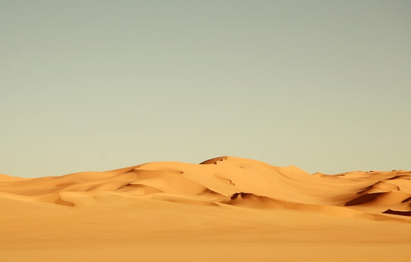 Picture sand, yellow, the wind, desert, heat, Africa, landscape, nature